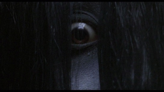 The-Grudge-Screencaps-movies-1709512-1024-576